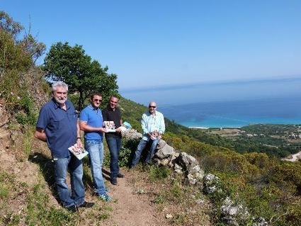 CCBV Île-Rousse: 13 boucles de randonnée (re)créées | Ile Rousse Tourisme | Scoop.it