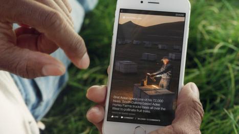 Officiel : Facebook va héberger des articles du New York Times, de BuzzFeed et d'autres médias   Environnement Digital   Scoop.it