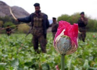 Unemployment in Afghanistan | Development in Afghanistan | Scoop.it