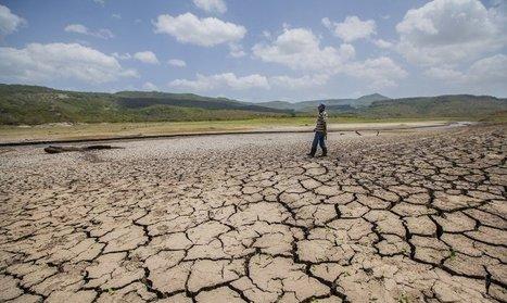 Más de 3,5 millones de centroamericanos necesitan apoyo por sequía | Política para Dummies | Scoop.it