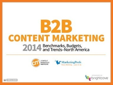 Over 100 B2B Content Marketing Statistics for 2014 | Thoughts on Content Marketing | Scoop.it