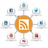 Réseaux Sociaux et Web : Nouvelles