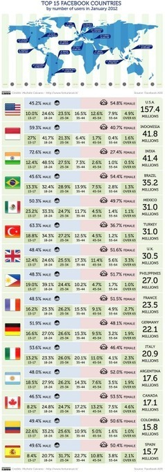 Statistics: Top 15 Facebook Countries in 2012 [Infographic] | Social Media (network, technology, blog, community, virtual reality, etc...) | Scoop.it