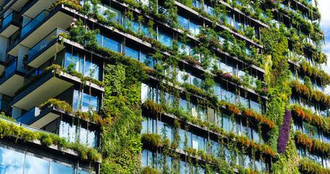 Agriculture urbaine : les AgTech à l'assaut des villes | Agronomie, élevage, eau et sol - Montpellier SupAgro | Scoop.it