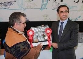 Açores revelam potencialidade na criação de aves diz José Bolieiro | Açores | Scoop.it