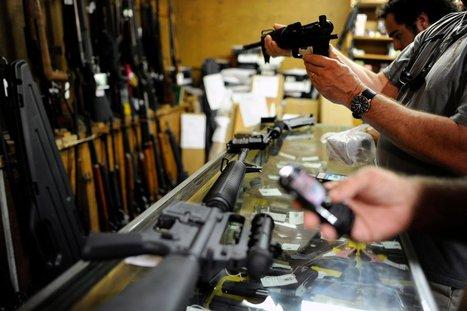 Panel Urges Better Gathering of Gun-Violence Data | gun control | Scoop.it