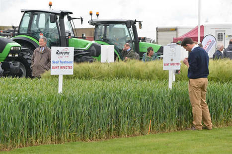 BBSRC/JIC/Rothamsted mentions: Cereals 2013 – novel science with a practical twist | BIOSCIENCE NEWS | Scoop.it