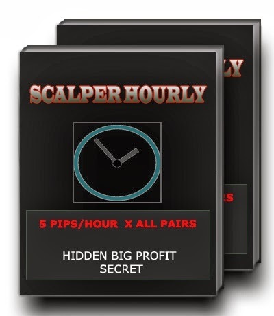 The 5 Pips Secret Scalper Hourly Trading System | Digital Marketplacedirectory | Scoop.it