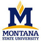 MSU's high-tech classroom engages students, boosts success - Montana State University | Distance Learning and Collaboration: Focus on Flipped and MOOC's | Scoop.it