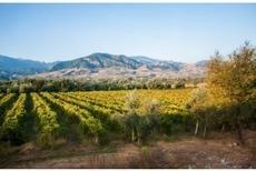 La Chine est devenue le 2e vignoble mondial après l'Espagne | Chimie verte et agroécologie | Scoop.it