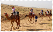 Golden Triangle Tour With Rajasthan | agra car rental | Scoop.it
