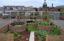 Agroparken en stadslandbouw tegen het licht | soul rebels | Scoop.it