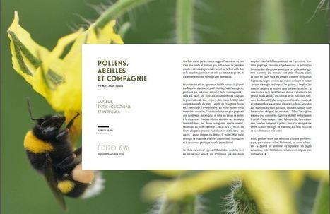 La fleur, entre hésitations et intrigues | EntomoScience | Scoop.it