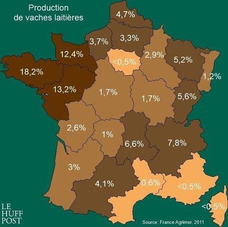 Où sont produits la viande que vous mangez et le lait que vous buvez (infographie) - HuffingtonPost   Agriculture en Dordogne   Scoop.it