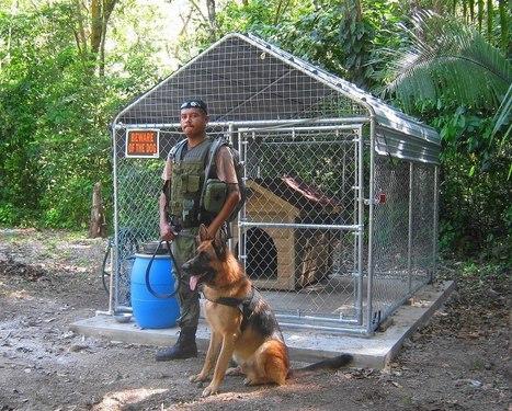 Belize K-9 Team Protects Xunantunich | Belize Best Adventures | Scoop.it