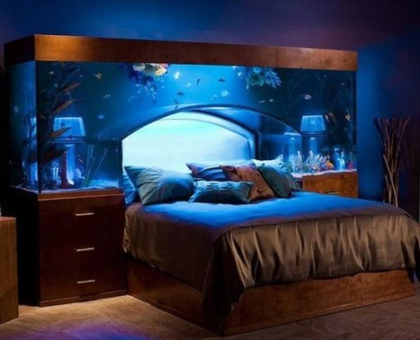 Amazing Interior Designs That Will Make Your Home Look Unique | crazy news articles | Scoop.it