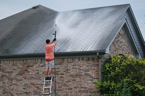 Just how to clean the ceiling with tacomaroofcare - posted by Miguel T. Jacobson at RedPymes | joseawilliams | Scoop.it