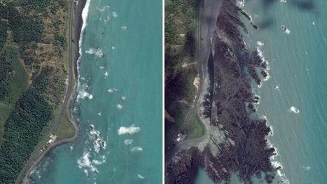 New Zealand quake lifted seabed by 2m | kennisbasis aardrijkskunde | Scoop.it