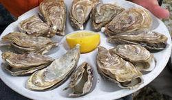 La discrétion des huîtres triploïdes   Sécurité sanitaire des aliments   Scoop.it