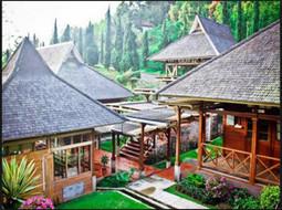 Rekomendasi Tempat Penginapan Di Ciwidey yang Murah | wisata indonesia | Scoop.it