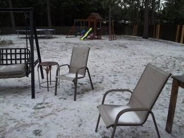Lots of white in Santa Rosa County, but was it snow? - The Northwest Florida Daily News   GARDEN ARBOUR   Scoop.it