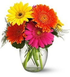 Get Same Day Delivery of Birthday Flowers in Toronto and surrounding are   Euro Flowers   Scoop.it