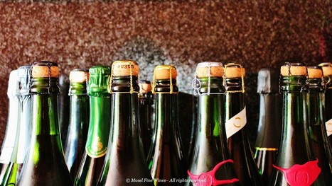 Let's Talk about Sekt | Vitabella Wine Daily Gossip | Scoop.it