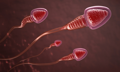 New sperm 'blocking' method found: Male contraceptive could be on the horizon | Amazing Science | Scoop.it