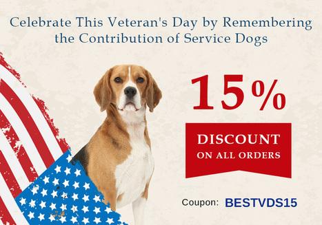 Celebrate Veterans Day With Service Dogs | BestVetCare | Pet Care | Scoop.it