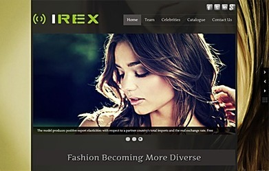IREX - Full Width WordPress Theme | Responsive WordPress Theme | Sketchthemes | Scoop.it
