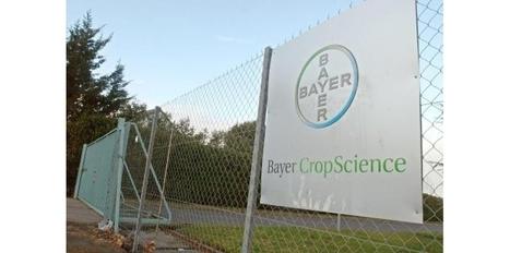 Pesticides: Bayer CropScience investit massivement dans le biocontrôle - Sciences et Avenir | Abeilles, intoxications et informations | Scoop.it