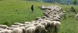 #Viaggio nell'#Abruzzo antico lungo «Le vie dei tratturi» | www.consulenteturisticolocale.it | Scoop.it