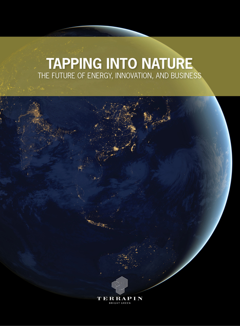 "101 Nature-inspired Innovations Featured in ""Tapping into Nature"" White Paper 