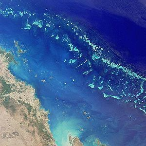 Experts Predict The Extinction of The Great Barrier Reef! | Geography | Scoop.it