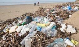 Biodegradable plastic 'false solution' for ocean waste problem | Oceans and Wildlife | Scoop.it