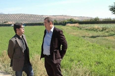 El sector de las producciones ecológicas generará 6.000 empleos ... - Ideal Digital | Agricultura ecológica y tintes naturales | Scoop.it