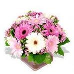 Send Flowers to India|Flowers delivery to India | Gift Shop | Scoop.it