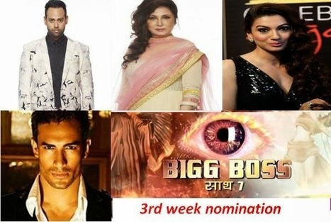 Asif, Anita, Elli, Gauahar and VJ Andy Nominated on Day 15 in Bigg Boss | BIGG BOSS Saath 7 News, Episodes, Photos | Scoop.it