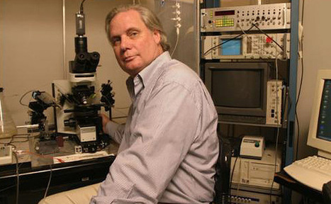 Científicos logran implantar en un cerebro la primera memoria artificial | Salud Publica | Scoop.it