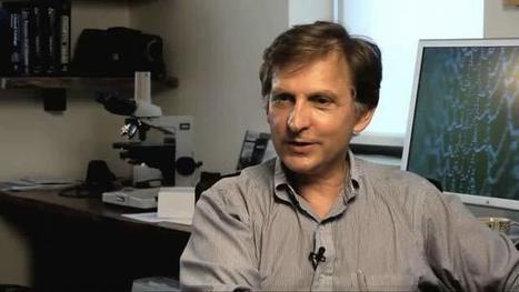 Meet The World's Top Virus Hunter | Insights | Scoop.it
