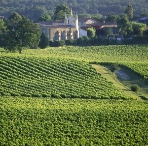 Un vignoble sur trois est à vendre à Bordeaux | actualité-buduquebec | Scoop.it