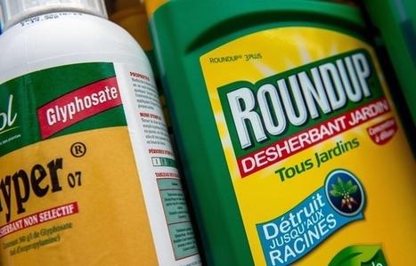 Pourquoi le Roundup reste bien enraciné en Europe?   Ainsi va le monde actuel   Scoop.it