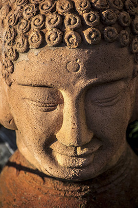 Where is the Third Eye   Anandoham   Spirituality   Scoop.it