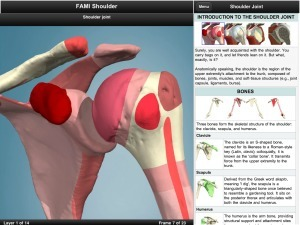 Renowned 3D anatomy developer Primal Pictures releases first iPad app | Medical Apps | Scoop.it