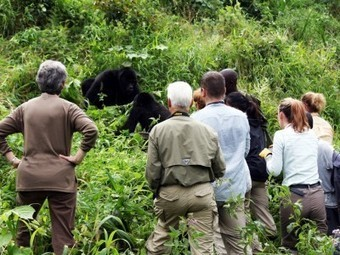 Journeys Discovering Africa Introduce New Small Group Adventure ... | Adventure Travel | Scoop.it