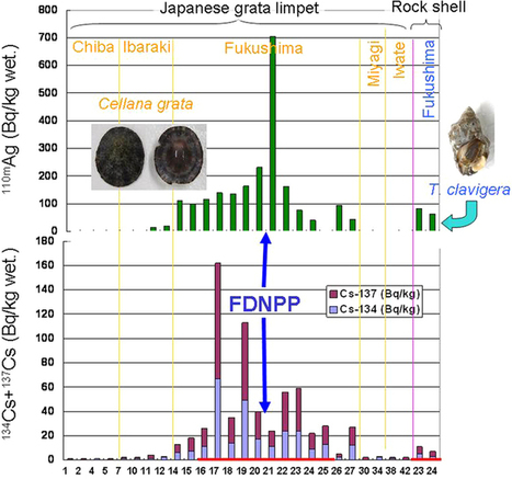 Decline in intertidal biota after the 2011 Great East Japan Earthquake and Tsunami and the Fukushima nuclear disaster: field observations | Anthropocene, Capitalocene, Chthulucene,  staying with the trouble at Fukushima | Scoop.it