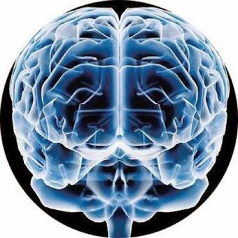 20 cosas curiosas del cerebro PARTE 2 ~ Nueva Mentes | Neurociencias | Scoop.it
