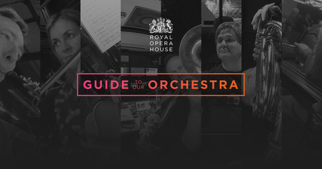 Royal Opera House's Guide to our Orchestra | Interactive Cultural Interfaces | Scoop.it