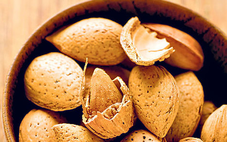 Lifecoach: are almonds healthy? - Telegraph.co.uk   Your Food Your Health   Scoop.it