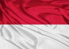 L'Indonésie développe la fibre optique - LaFibreOptique.com | Le numérique et la ruralité | Scoop.it